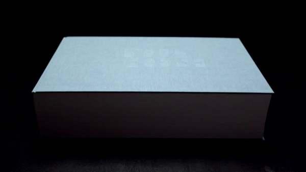 Olafur Eliasson, Your House, 2006