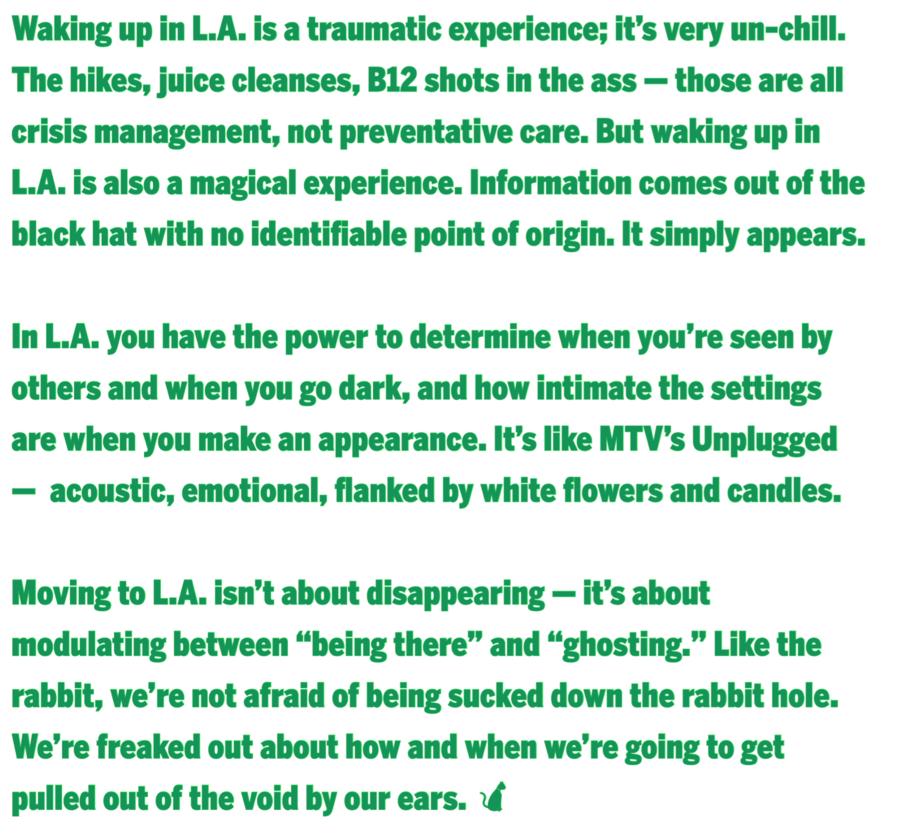 K-Hole Description of L.A.