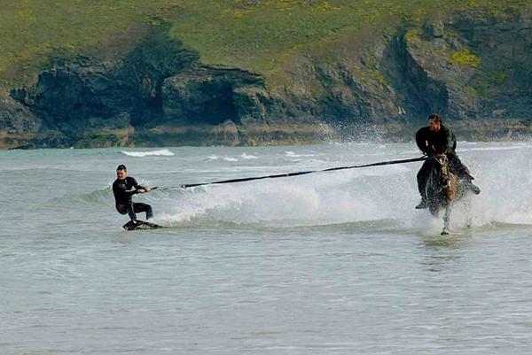 horse_surfing-1.jpg?x65729