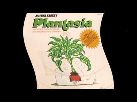 Full Plantasia Album by Mort Garson, 1976 0:00 - Plantasia 3:16 - Symphony For A Spider Plant 5:50 - Baby's Tears Blues 8:47 - Ode To An African Violet 12:38 - Concerto For Philodendron & Pothos 15:40 - Rhapsody In Green 19:00 - Swingin' Spathiphyllums 21:51 - You Don't Have To Walk A Begonia 24:17 - A Mellow Mood For Maidenhair 26:25 - Music To Soothe The Savage Snake Plant ------------------------------------------------------------------------------------------- Obviously I don't own this or claim to.