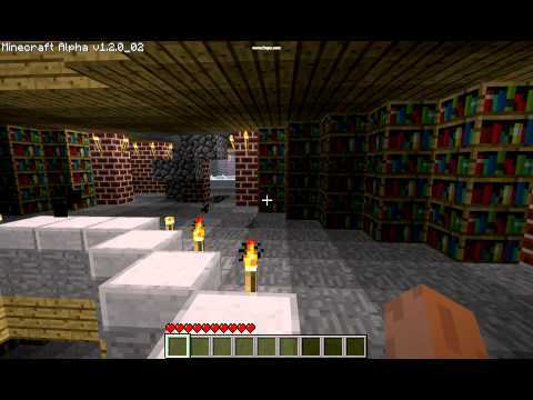 Minecraft: The Library of Babel