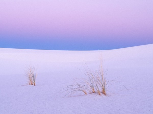 Tranquility-White-Sands-New-Mexico.jpg