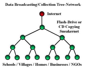 tree_network.png