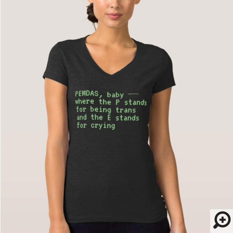 """""""PEMDAS, baby — where the P stands for being trans and the E stands for crying"""" Jersey V-Neck T-Shirt"""