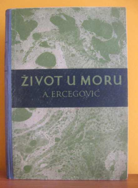 Ante-Ercegovic-Zivot-u-moru_slika_O_9674205.jpg