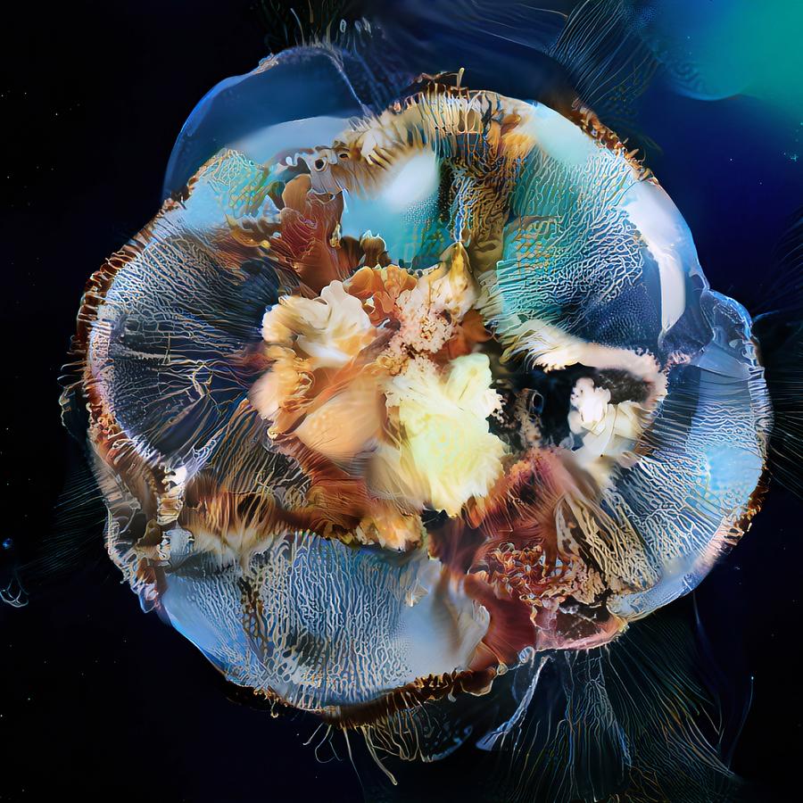 seabed.jpg