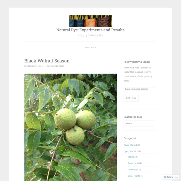 It's time to collect black walnuts! The black walnut tree (Juglans nigra) is native to eastern North America. The outer husk of the nut is the source of dye. The colorant is juglone. It is a dir…