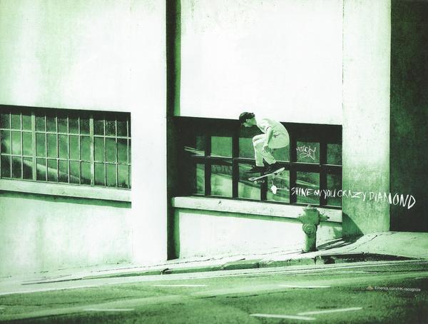 Emerica-Back-Cover1.jpg