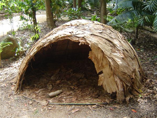 Hut-rainforest.JPG