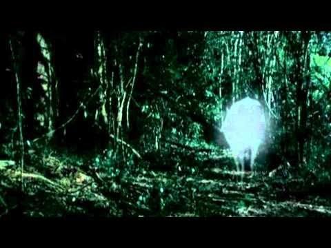 Tropical Malady - Apichatpong Weerasethakul
