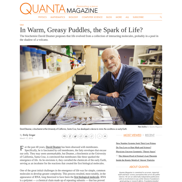 In Warm, Greasy Puddles, the Spark of Life? | Quanta Magazine