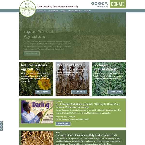 Natural Systems Agriculture | The Land Institute