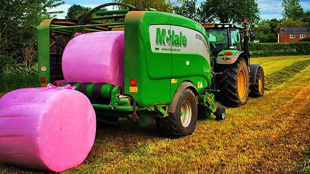 pink-bales-by-Rob-Manford-1.jpg