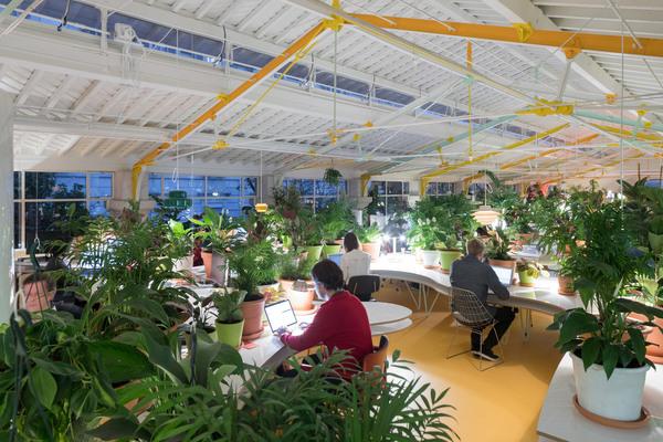 second-home-lisboa-selgascano-interiors-offices-lisbon-co-working