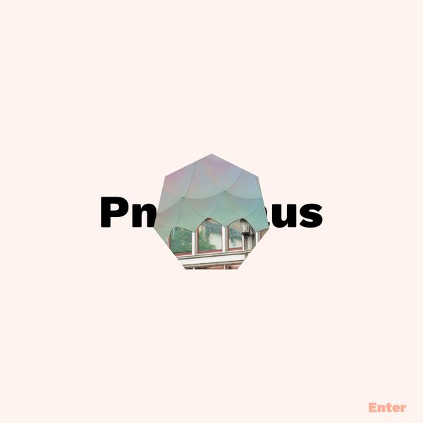 PNEUHAUS