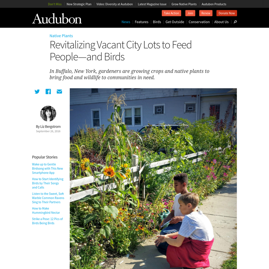 Like many other U.S. cities, Buffalo, New York, struggles with issues of urban blight-think vacant lots filled with trash and weeds-and food deserts where residents lack access to stores selling fresh, healthy food. In response, a local nonprofit is transforming these empty lots into gardens blooming with flowers, vegetables, and fruit.
