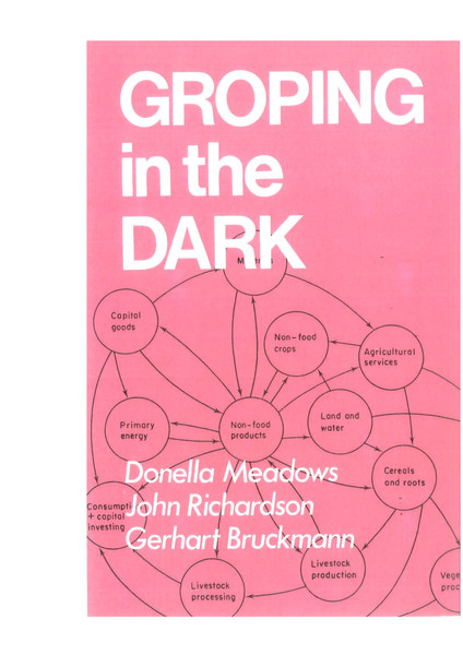Donna Meadows, Groping in the Dark